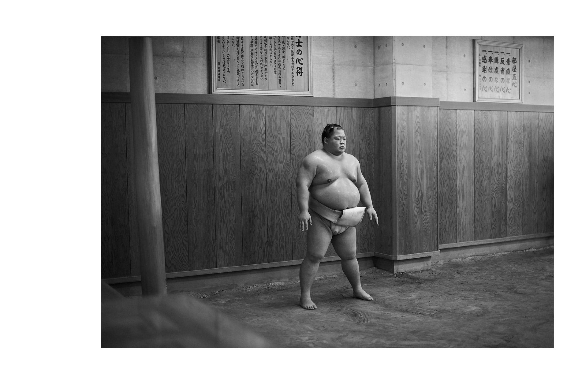 Sumo - 1 of 12