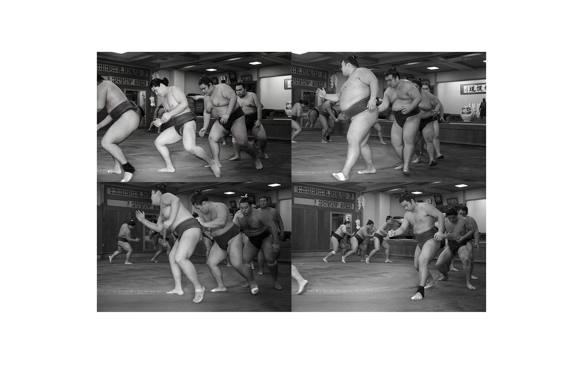 Sumo - 10 of 12