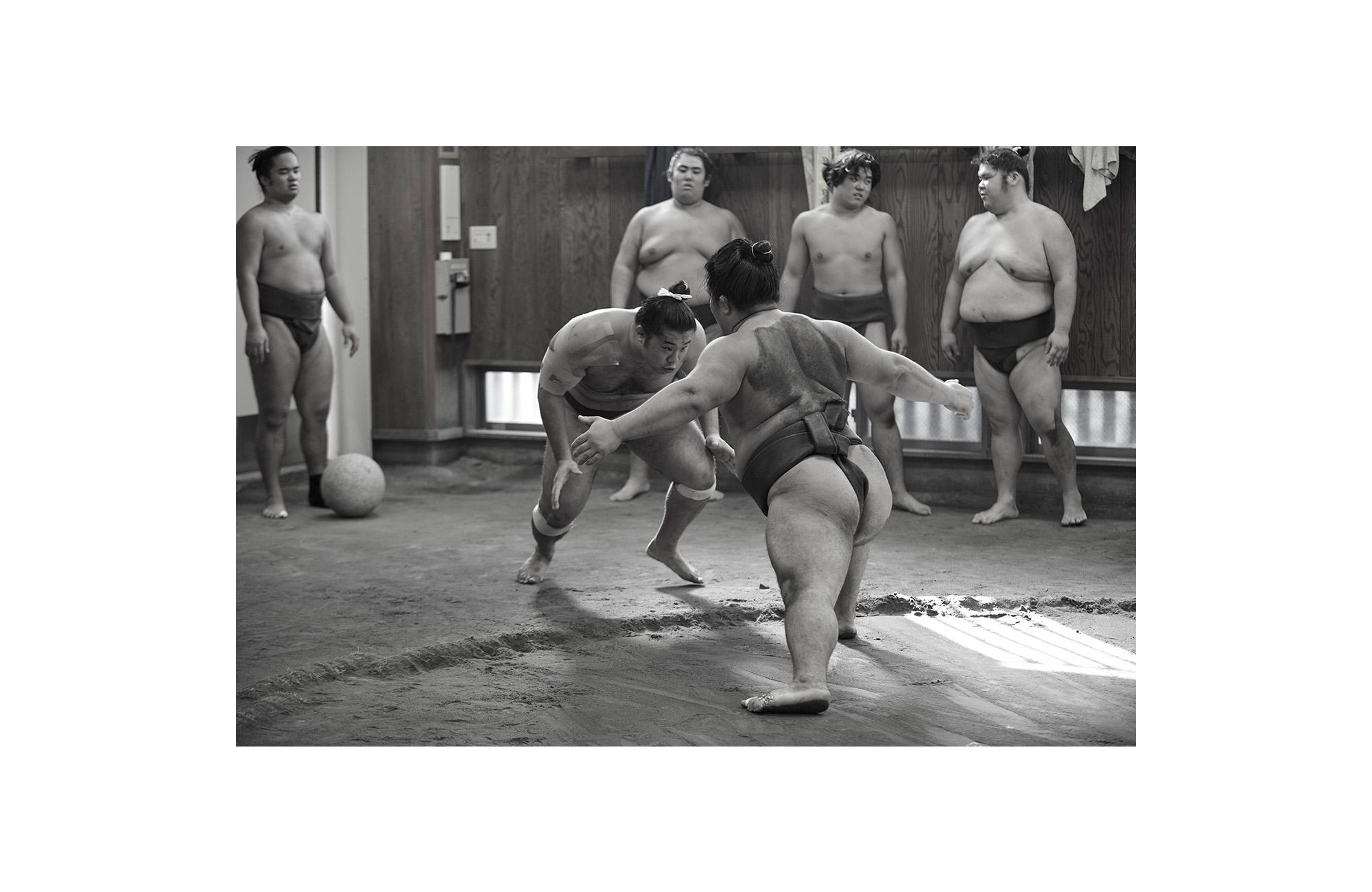 Sumo - 6 of 12