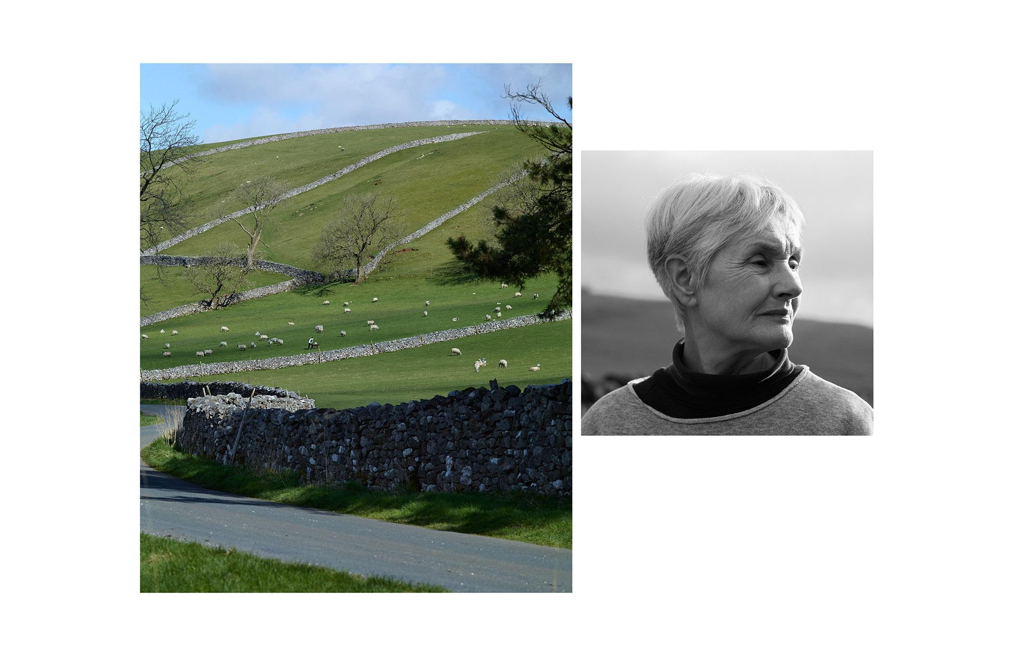 Hole and Corner | Ann Stewart - 1 of 6